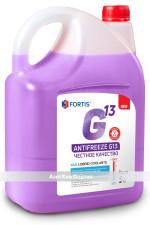 канистра G13 фиолетовая копи