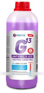 канистра G13 фиолетовый 1-копи 300